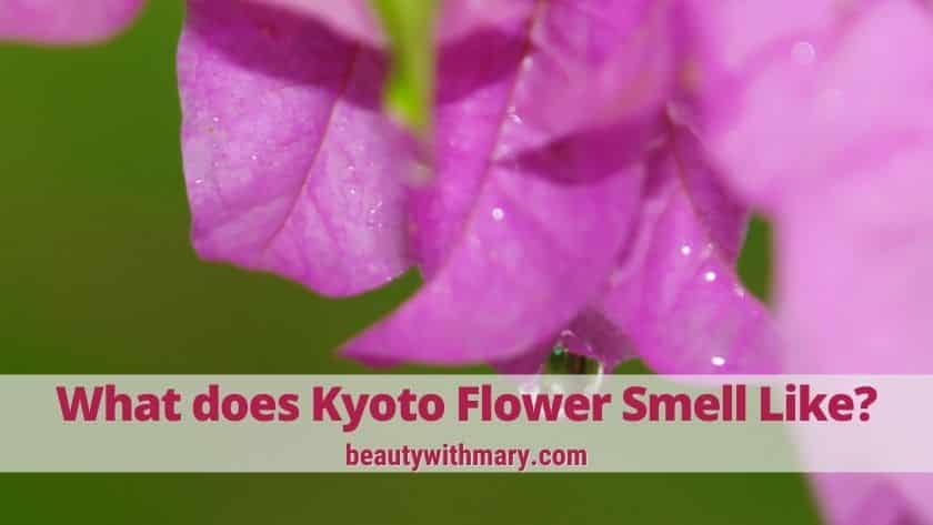 what does Avon Haiku Kyoto flower perfume smell like