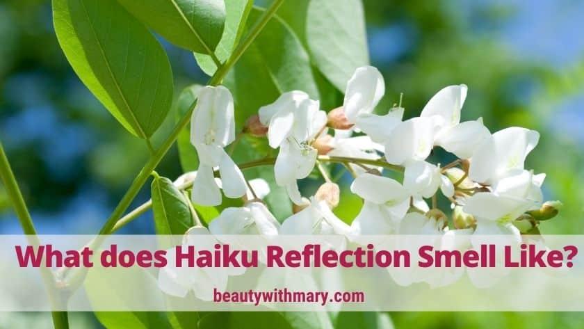 Avon Haiku Reflection Perfume (Best Feminine Scent)